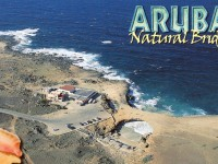 Aruba - Natural Bridge from Air (Postcard)
